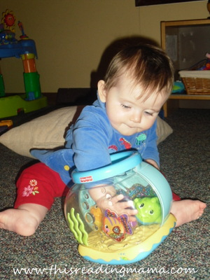Fisher Price Fish Bowl