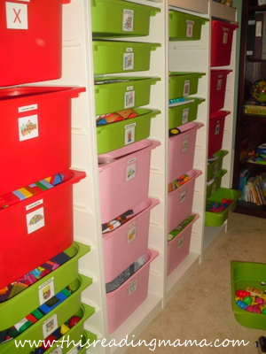 IKEA Trofast Organizer for Organizing and Storing Learning Toys