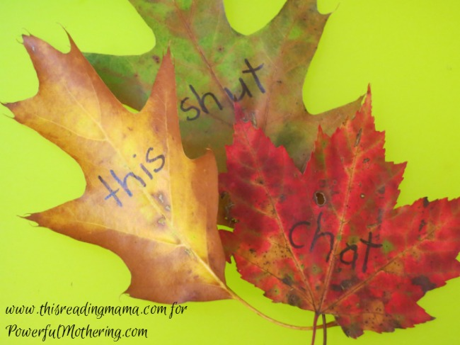 writing phonics words on fall leaves