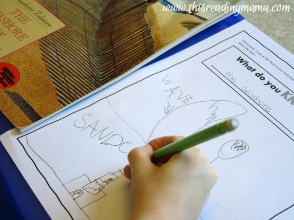 writing and drawing about schema before reading
