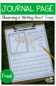 Tree Journal Page – Observing & Writing About Trees