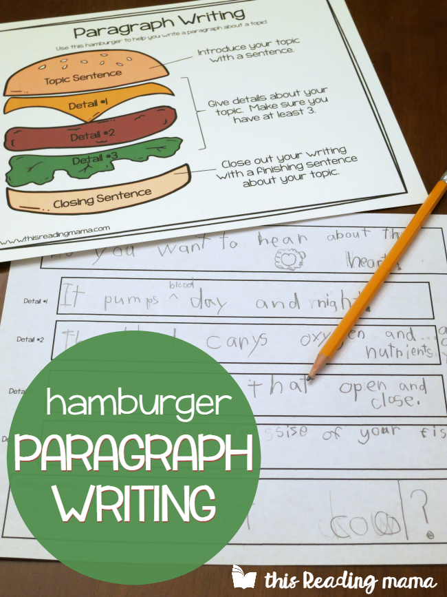 burger writing template - hamburger paragraph writing with main idea details
